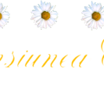 PENSIUNEA EDY STAR SRL
